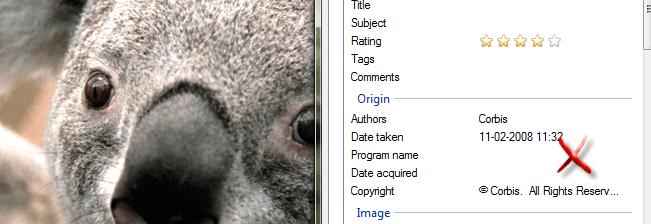 removing_exif_koala